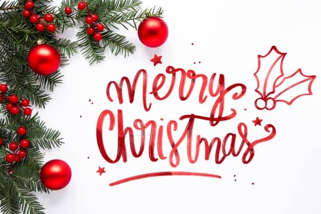 Merry Christmas & New Year!